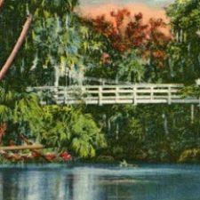 Florida Digital Postcards Exhibit